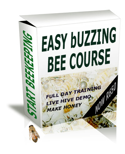 Easy Buzzing Bee Course icon