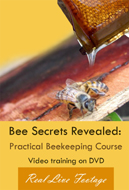 Bee Course DVD for sale